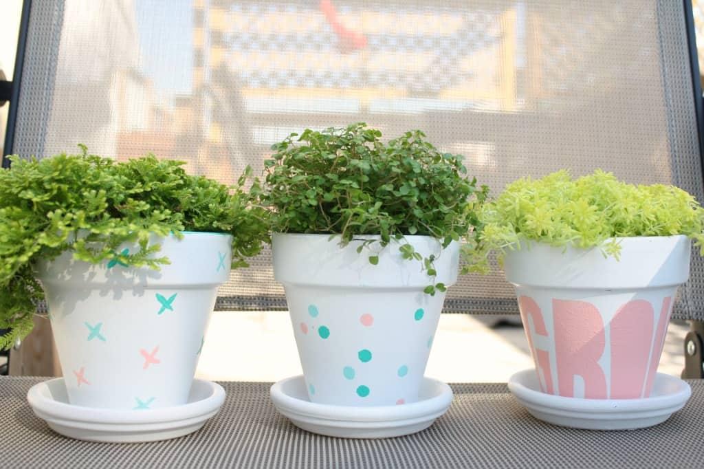 pots-outside