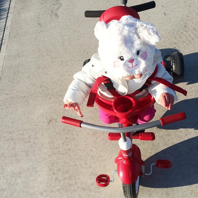 Biking baby bunny ?#baby