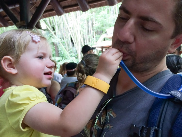 Disney World tips with a toddler