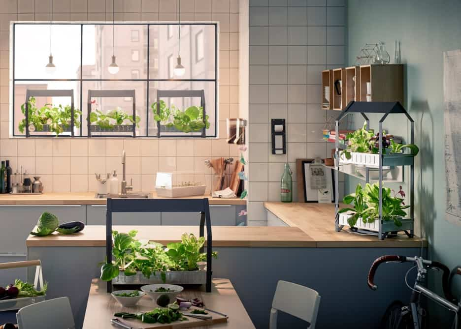 For Your Green Thumb Mother In Law Who Loves Cooking Kitchen Greenhouse