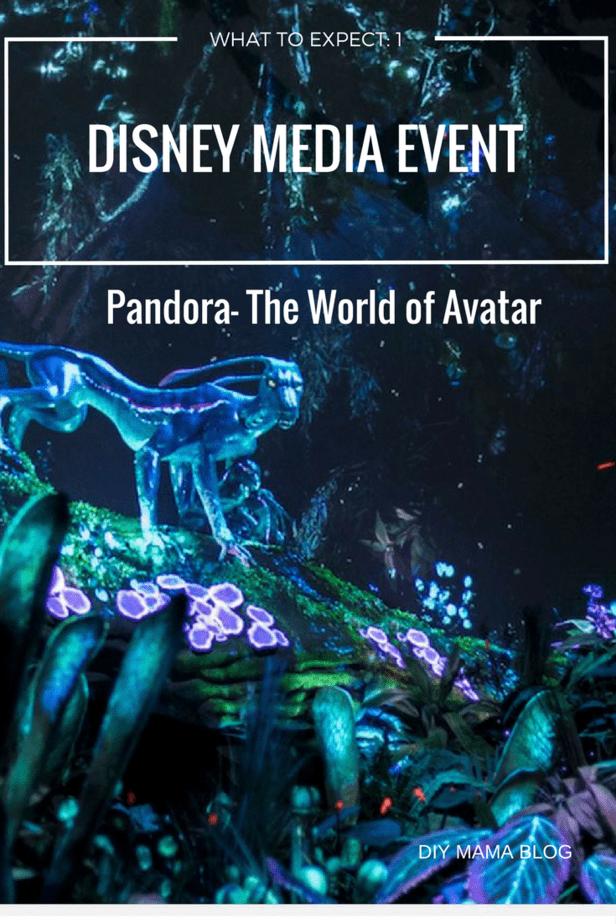 Pandora Media Event