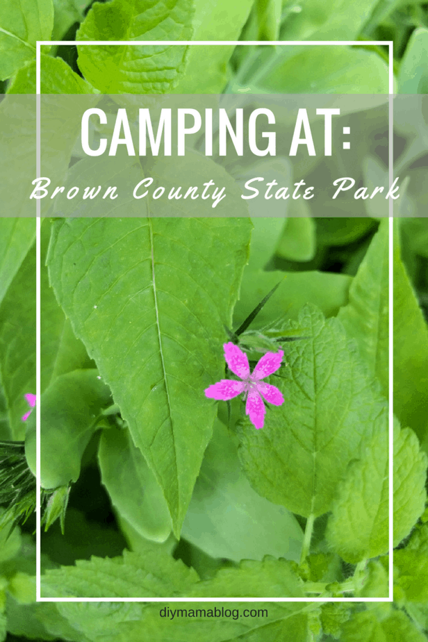 Camping at Brown County State Park